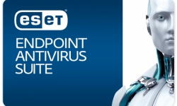 card - ESET Endpoint Antivirus Suite